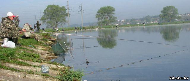 рыбалка в прудах запорожской области